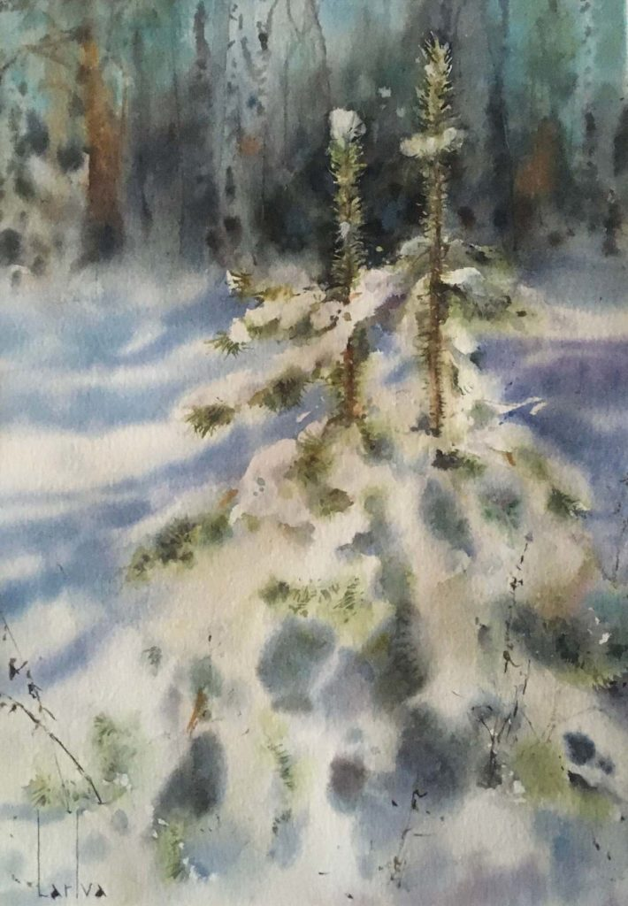 В лесу родились елочки