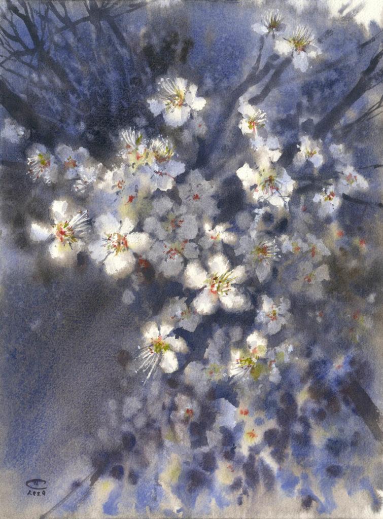Белые цветы в лунном свете