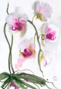 Орхидея. Лист 2