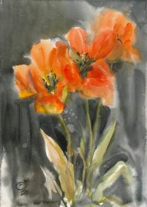 Тюльпаны на темном фоне